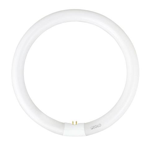 Ring Leuchtstoffröhre Led : eglo 12405 leuchtstoffr hre g10q 32w 230v ring 2700k ~ Markanthonyermac.com Haus und Dekorationen