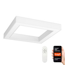Immax NEO - Dimmbare LED Deckenleuchte CANTO LED/60W/230V 80x80 cm + Fernbedienung