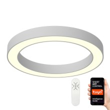 Immax NEO - Dimmbare LED Deckenleuchte PASTEL LED/66W/230V 95 + Fernbedienung
