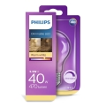 LED dimmbare Glühlampe VINTAGE Philips E27/5,5W/230V 2700K