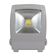 LED-Reflektor FLOOD FE-N LED/30W/230V IP65