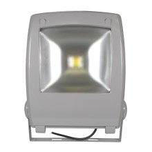 LED-Reflektor FLOOD FE-N LED/50W/230V IP65
