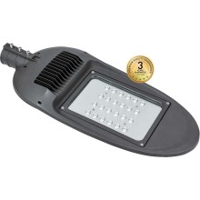 LED Straßenlampe BOSTON LED/100W/230V IP65