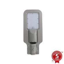 LED Straßenlaterne LED/60W/230V IP65