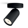 Philips - Spotlight 1xGU10/5.5W/230V